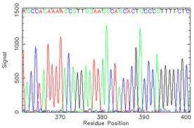 http://www.biology.ualberta.ca/facilities/mbsu//uploads/images/sequence_trace.jpg