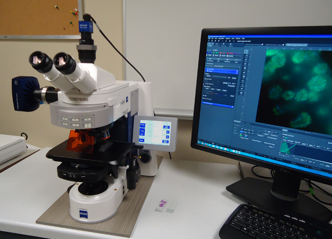 http://www.biology.ualberta.ca/facilities/microscopy//uploads/images/Zeiss M2.png